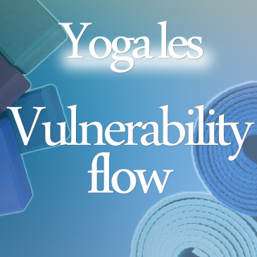 Vulnerability flow