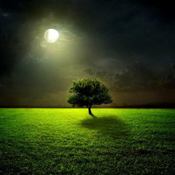 Maan van het Ontwaken | Volle Maan mei 2017