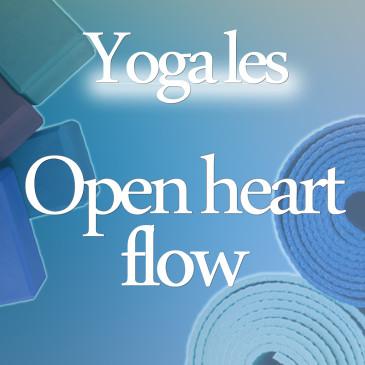 Open Heart Les