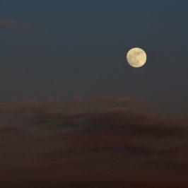 Koester je plannen met de Volle Maan in Weegschaal